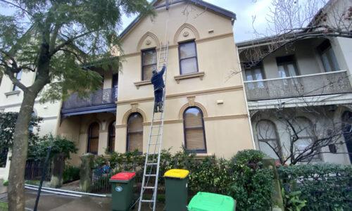 External Cleaning Randwick